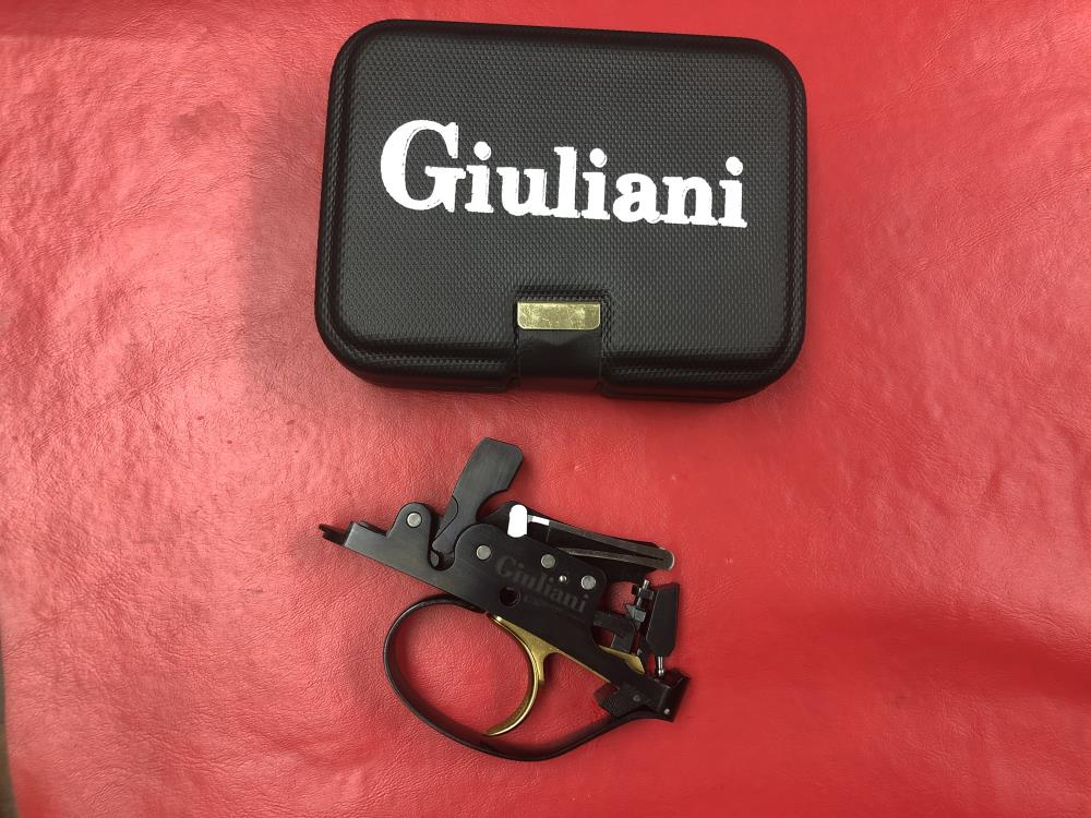PREFITTED GIULIANI EXTERNALLY SELECTABLE ENGRAVED LEAF SPRING TRIGGER GROUP - NEW